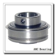 AMI MBFX205NP  Flange Block Bearings