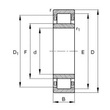 50 mm x 90 mm x 20 mm  FAG NU210-E-TVP2  Cylindrical Roller Bearings