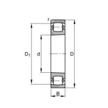 55 mm x 100 mm x 21 mm  FAG 20211-K-TVP-C3  Spherical Roller Bearings