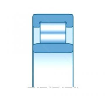 120,000 mm x 260,000 mm x 106,000 mm  NTN NU3324 cylindrical roller bearings