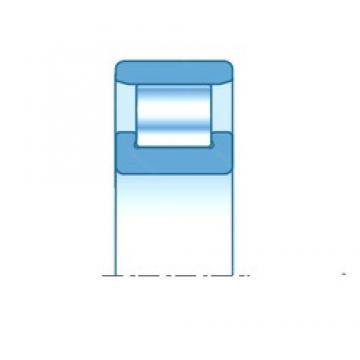 55,000 mm x 120,000 mm x 29,000 mm  NTN N311E cylindrical roller bearings