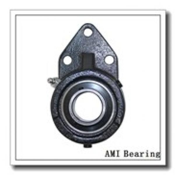AMI UGSLF208-24  Mounted Units & Inserts #3 image