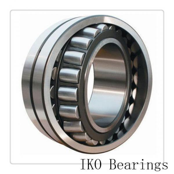 11.417 Inch | 290 Millimeter x 14.173 Inch | 360 Millimeter x 3.937 Inch | 100 Millimeter  IKO RNA4952  Needle Non Thrust Roller Bearings #1 image
